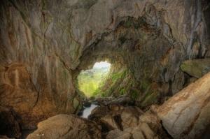 interior cueva gato
